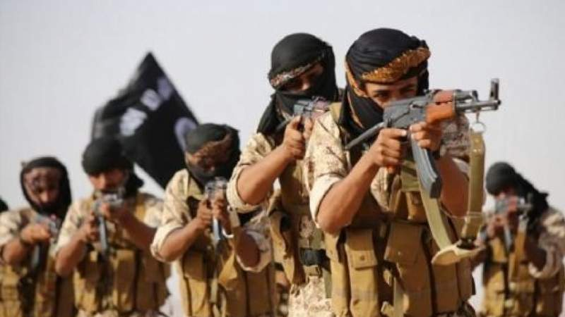 Liberating Al-Baidha from Daesh Is A Painful Strike to Saudi-led Aggression against Yemen